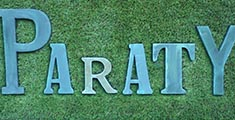 Paraty logo